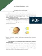O_mito_da_fontanela_fechada_revisao
