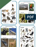 ANIMALES EN EXTINCIÓN SELVA.docx