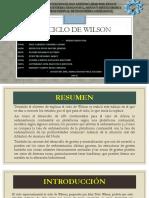 Diapositivas-Ciclo de Wilson final