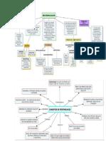mapa conceptual epistemologia