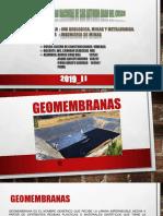 GEOMEMBRANA CAPITULO 1