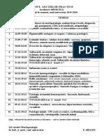 Planul lecţiilor practice, semestrul de toamnă, 2019-2020.doc