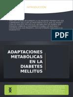 Adaptaciones metabolicas