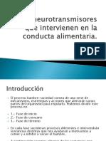 Neurotrasmisores Que Intervienen e n La Aliementacion
