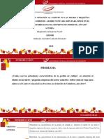 REQUEJO-PONENCIA-TALLER IV