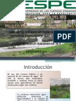 estudio cuenca pate