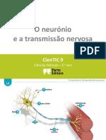 Ctic9 L2 O Neurónio e a Transmissão Nervosa