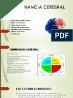 DOMINACIA CEREBRAL 2