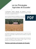 Cuáles son los Principales Núcleos Agrícolas de Ecuador