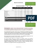 381568350-Manual-de-La-Corrida-Financiera-de-Prana-Mexico.pdf