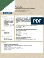 CV ING AMBIENTAL.pdf. (2)