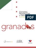 Estudio de Granada