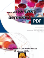 blastomices dermatiditidis