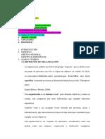 ORGANIZACIONES- avance.docx