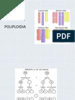 poliploidia.pptx