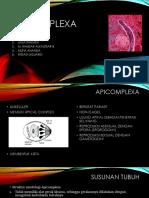 APICOMPLEXA - Kelompok 3.pptx