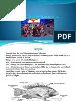 Tilapia Hatchery Management