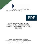 INFORME ESTUDIO APOYO SOCIAL SECUNDARIA
