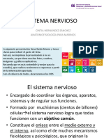 6. SISTEMA NERVIOSO .pdf