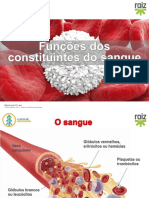 re82138_cv6_funcoes_constituintes_sangue