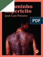 O caminho imperfeito (José Luís Peixoto)