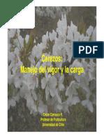 Manejo de la carga y el vigor en cerezos - Oscar Carrasco.pdf