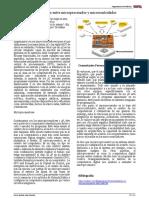 Diferencia Entre Microprocesador y Microcontrolador