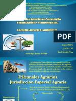Derecho Agrario Y ambiental Slideshare.pptx