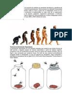 Teoría Evolucionista.docx