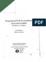 01080031 Feldman Palamidessi Programaci+¦n de la ense+¦anza en la universidad