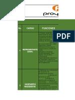 PROFESIOGRAMA PROYECTA INGENIERIA  CONSTRUCCIONS.A.S