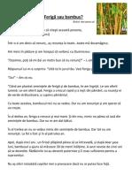 Feriga sau Bambus.docx
