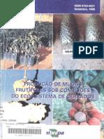 Produção de Mudas Frutíferas - Cerrado.pdf