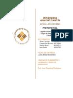 Equipo 3-Proyecto FInal.docx