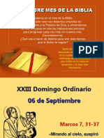 XXIII Domingo Ordinario, Mc. 7, 31-37