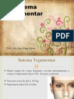 aula12-sistemategumentar-150310120143-conversion-gate01