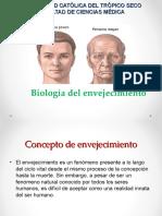 2. Fisiop Fisiología envejecimiento.ppt