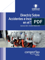 Directriz Sobre Accidentes de Incidentes en el Trabajo.pdf