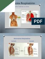 Sistema Respiratório2 (1)