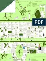 155591714-Exposicion2.pdf