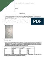 solucion- plasticos parcial 2.docx