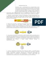 ENERGIA REATIVA.docx