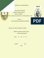 medición  de logros  para la conservación de sitio.docx