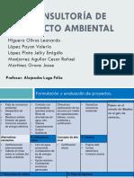 Consultoría de impacto ambiental.pptx