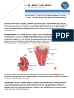 fisiologia renal AULA 01.docx