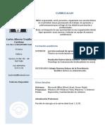 curriculum 1.0.docx