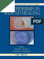 The Epidermis in Wound Healing