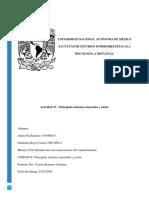 PitaRamirez_Ailem-ReyesCorrea_Actividad 15.docx