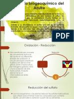 El ciclo del Azufre.pptx