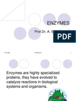 ASY Enzymes 08
